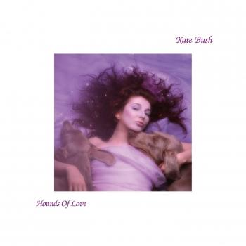 Cover Hounds Of Love (2018 Remaster)