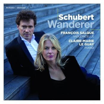 Cover Schubert: Wanderer