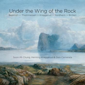 Cover Under the Wing of the Rock